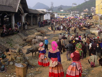 Bacha Market,Vietnam Panorama Tours,Vietnam Panorama 23 Days