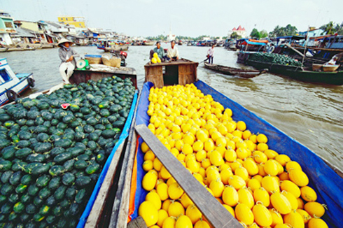 Cai Be Floating Market,Cai Be Tour
