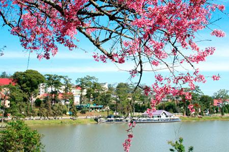 Tuyen Lam Lake,Da Lat Tours,Cat Tien National Park,Cat Tien Tour