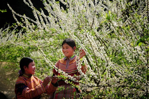Bac Ha,North West Vietnam Tours,North West Adventure Tours Vietnam,North West Vietnam Travel