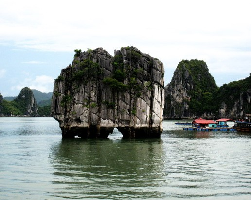 Dinh Huong Island-Halong Bay Cruise 2 Days